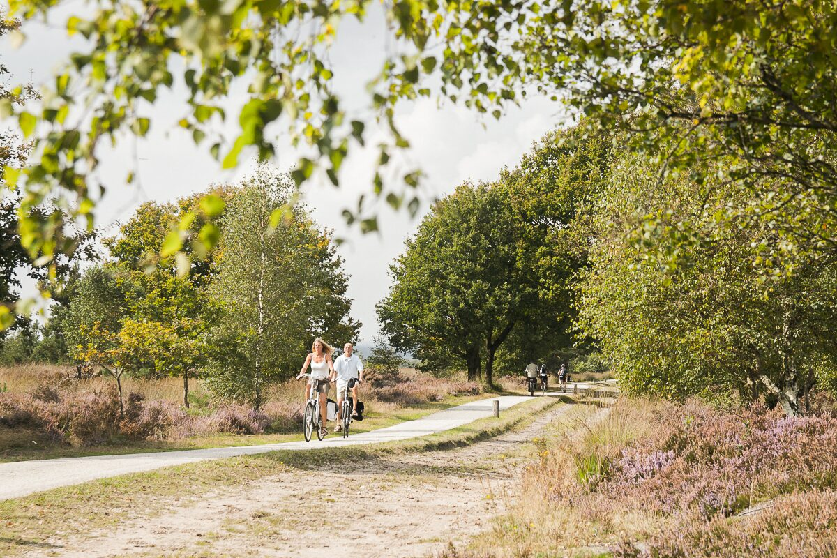 Free cycling and walking route booklet