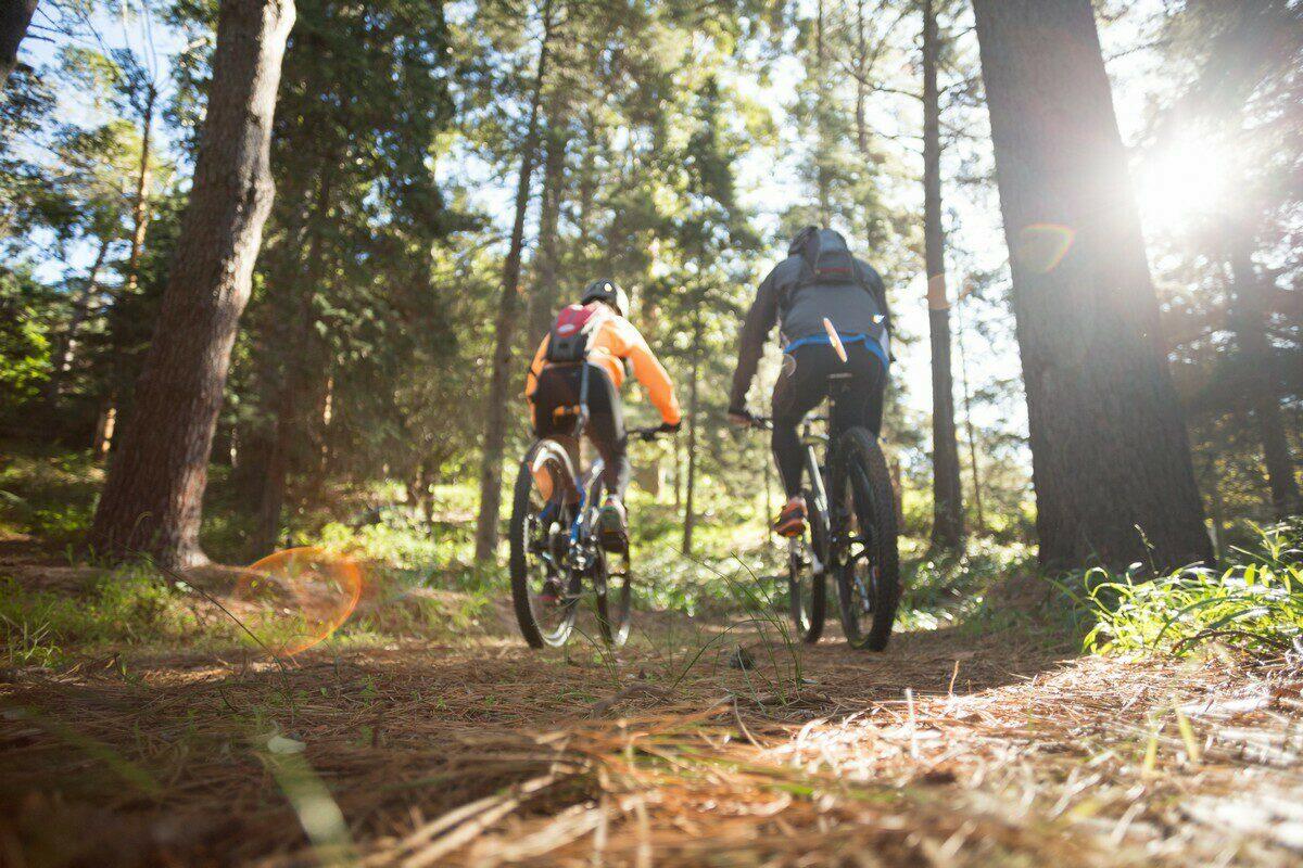 Wandelen en fietsen | Molenduin