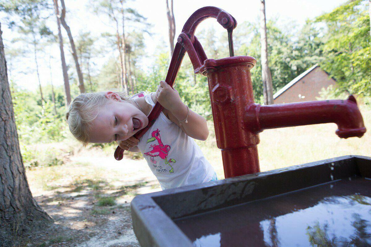 Familienpark Nienoord in Leek