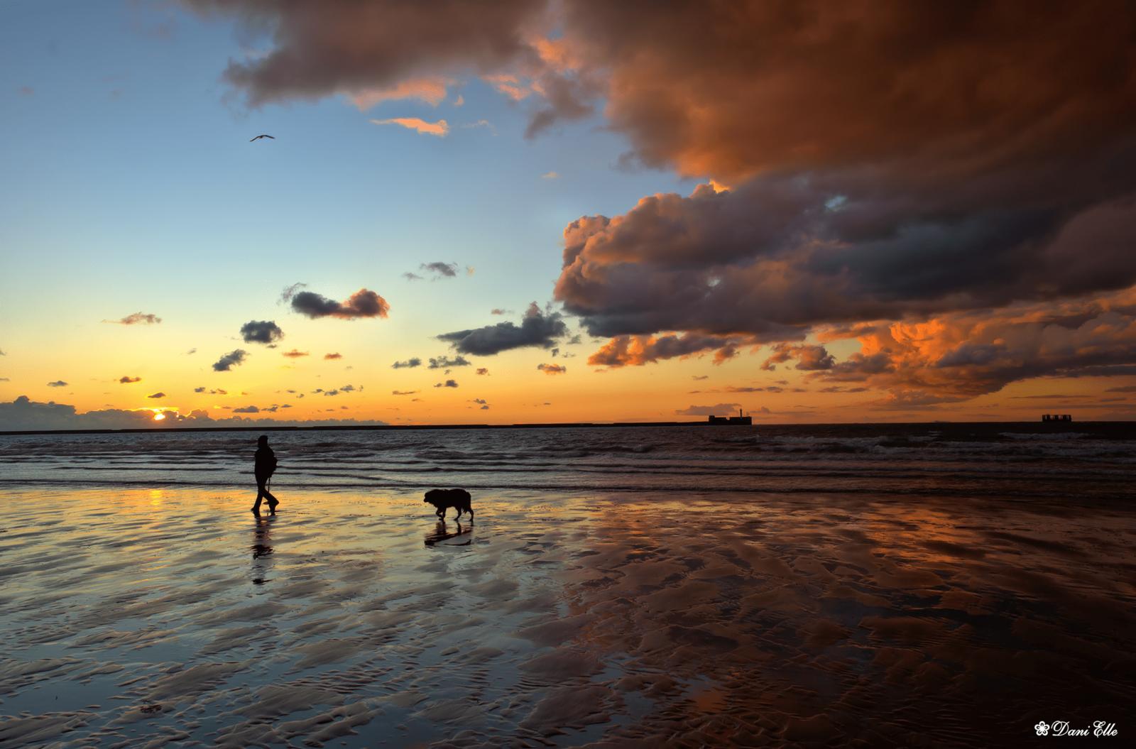 Top 12 des plus belles plages de la Côte d'Opale - Boulogne sur Mer