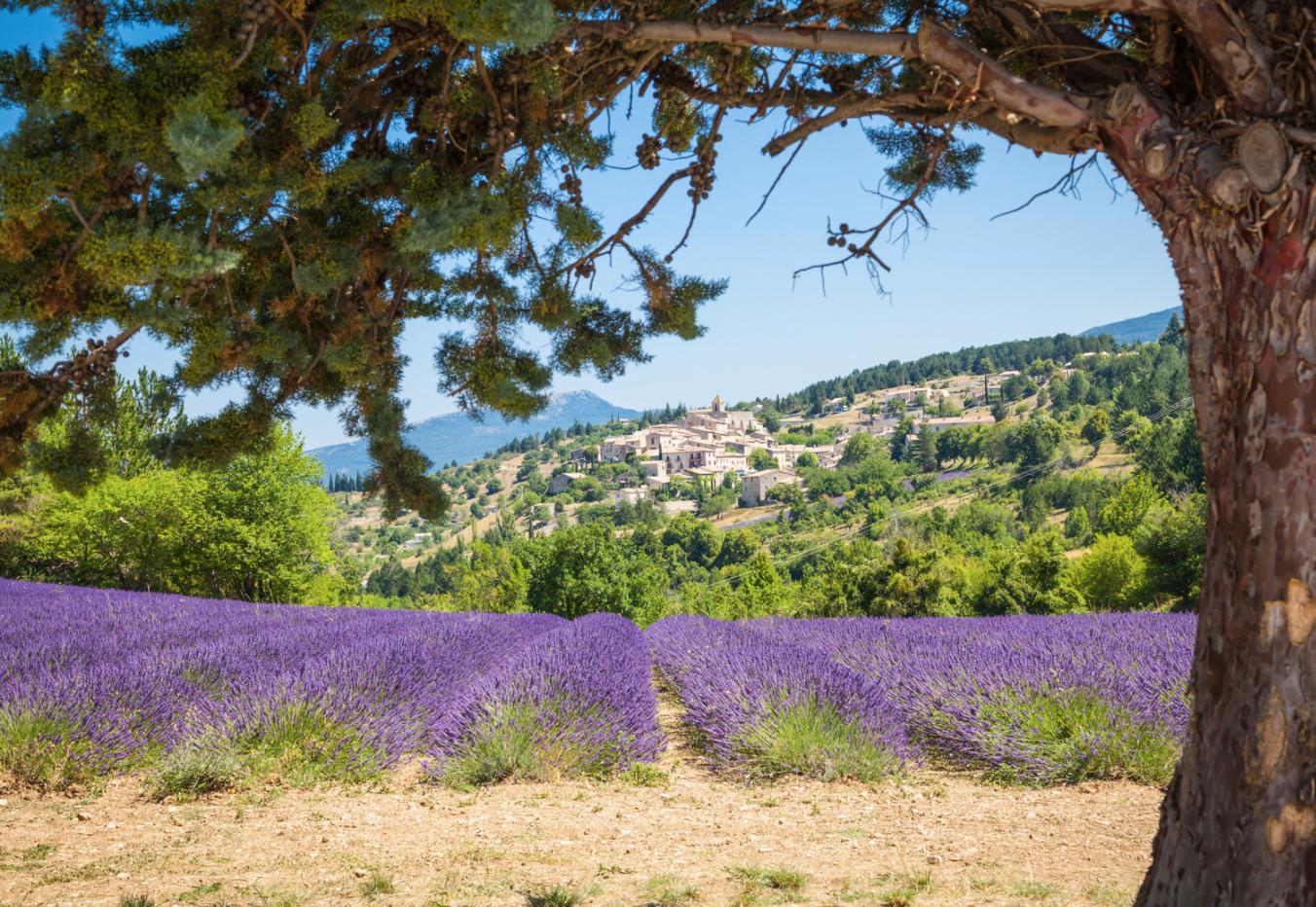 Vakantie in Frankrijk in elk seizoen bij Villa Parcs