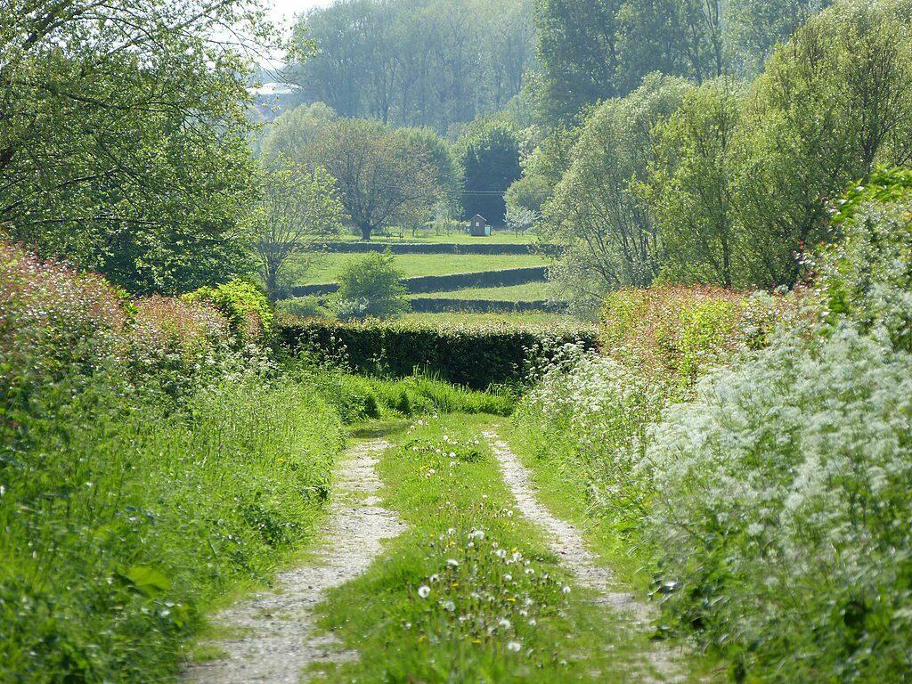 Een pad door de coulisselandschap in het regionale natuurpark l'Avesnois, Noord Frankrijk.