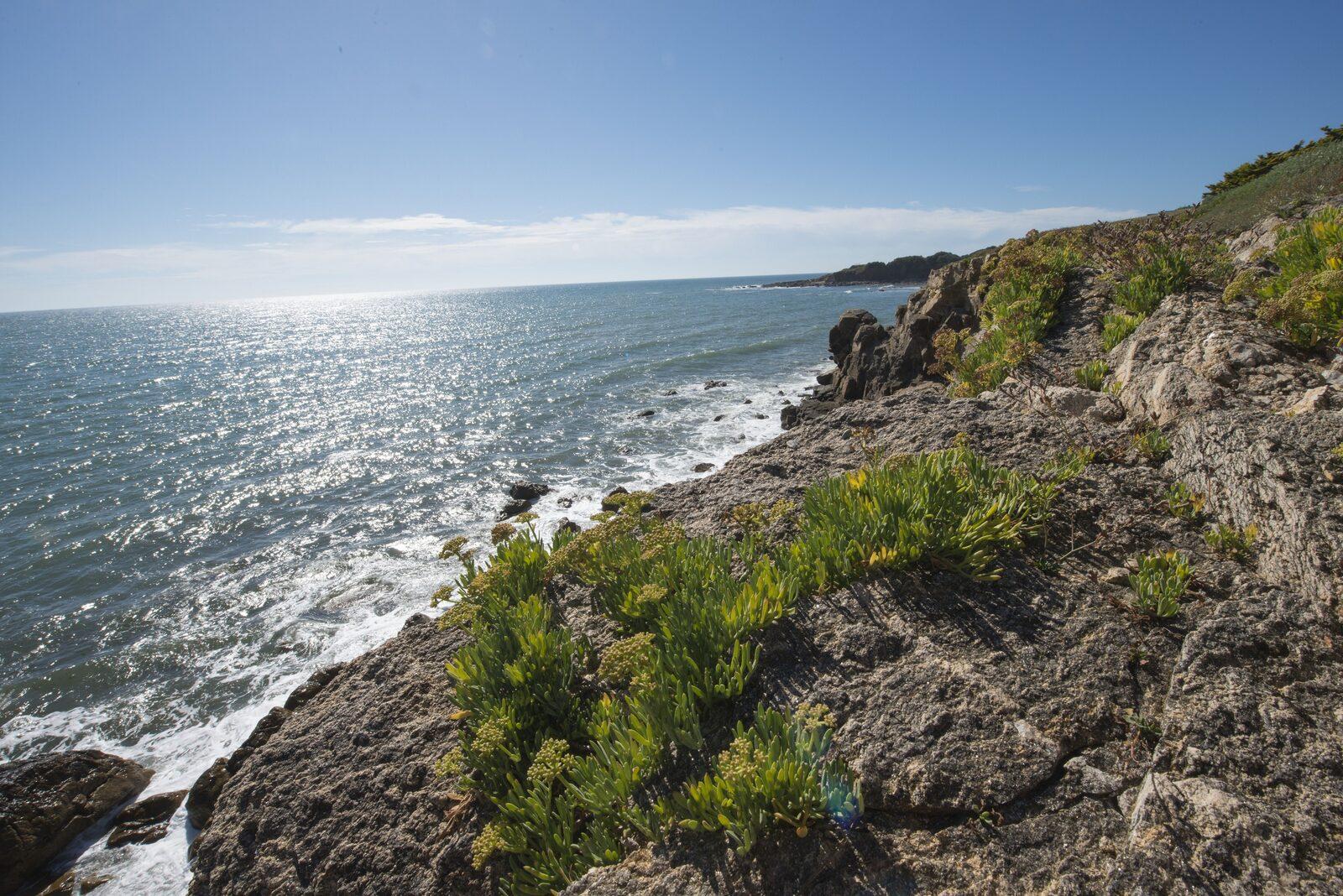 Rotslandschap aan zee - Oasis Les Jardins