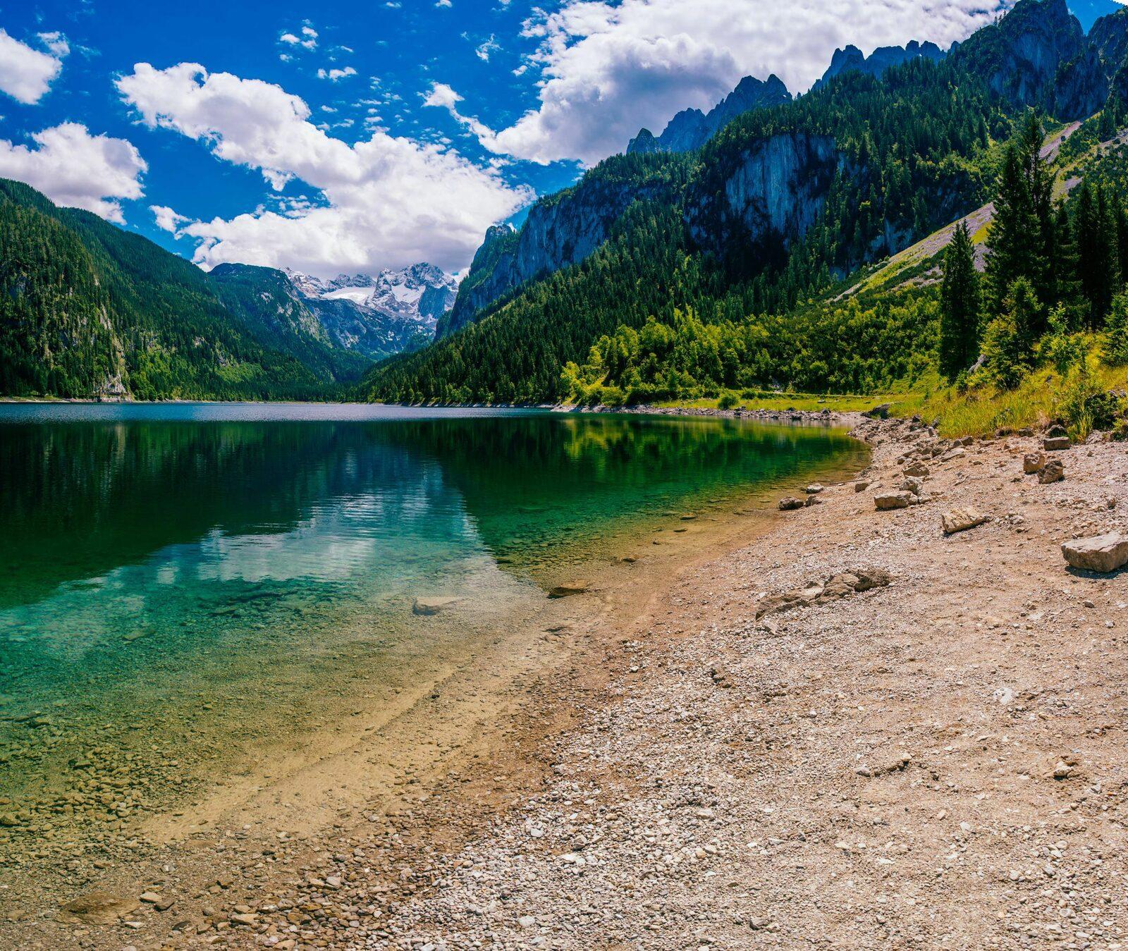 Découvrez les secrets de la montagne en été