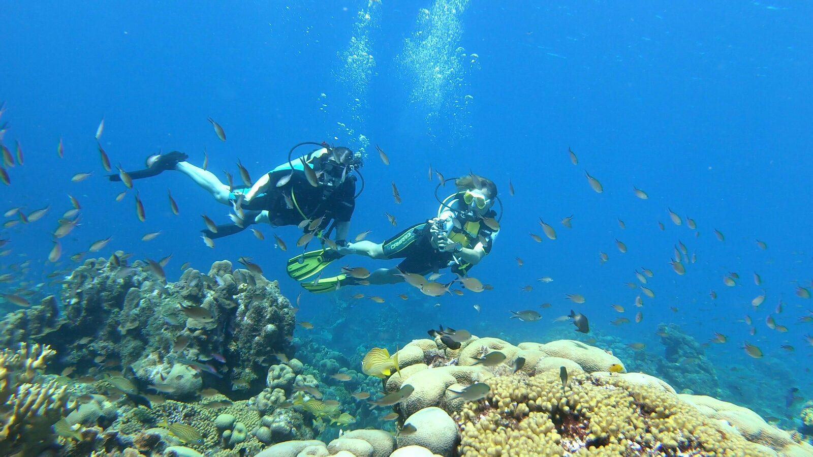 Diving & Snorkeling Trips