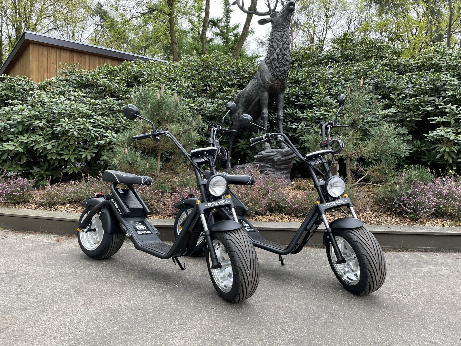 Renting E-Choppers