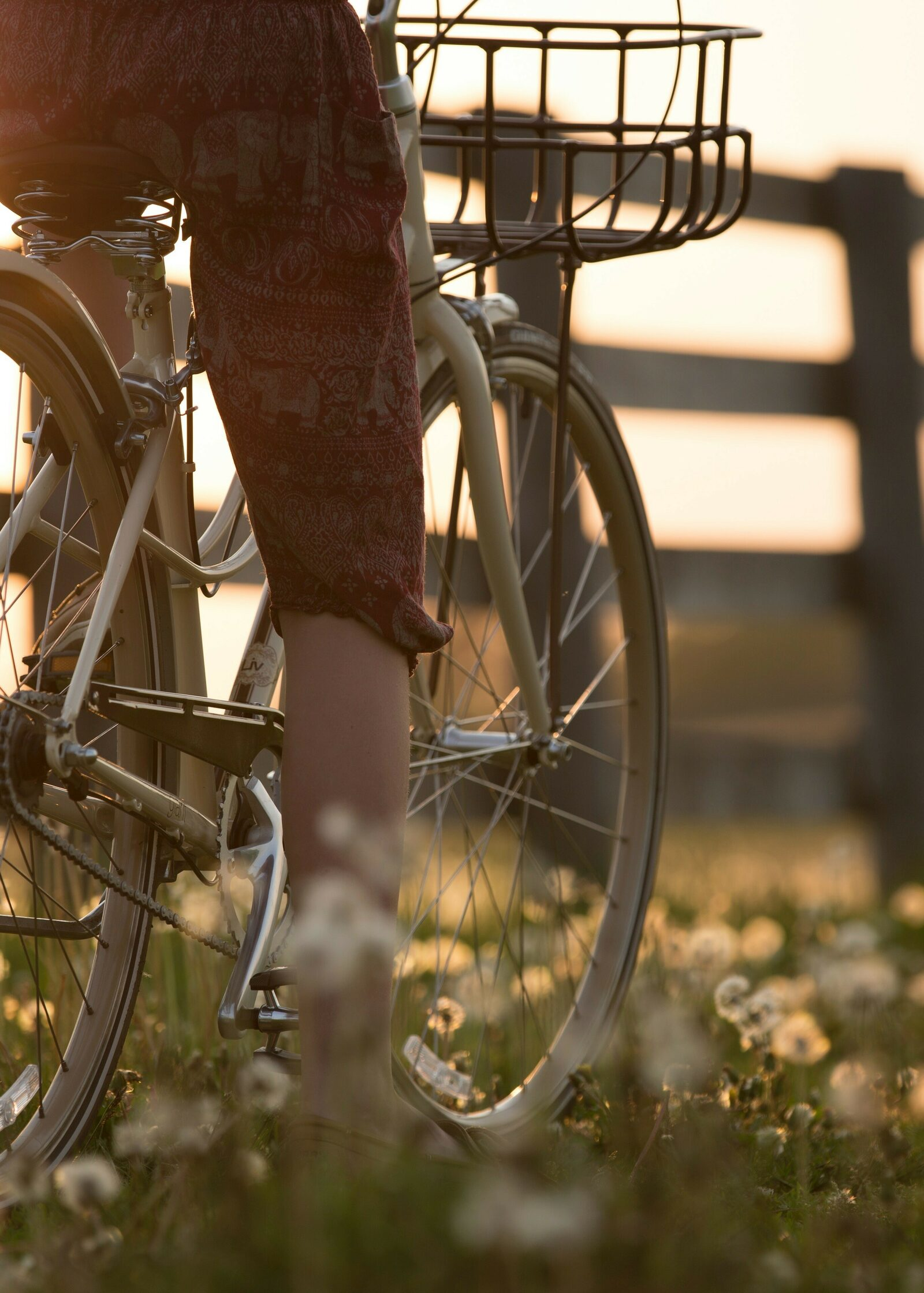 fietsen en wandelen aan de Franse grens