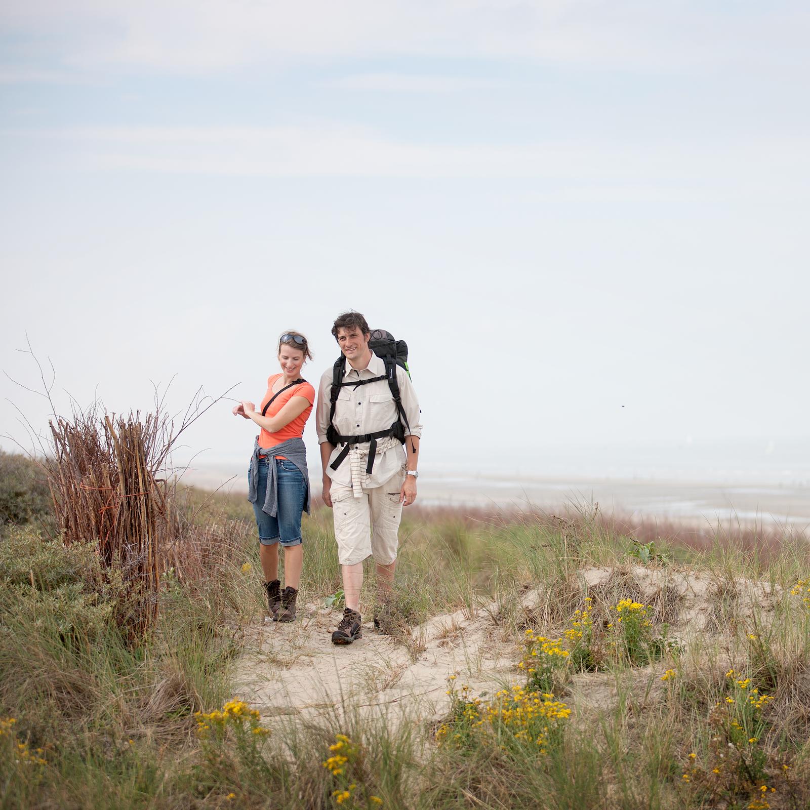 Natuur aan de kust - blankenberg - Holiday Suites