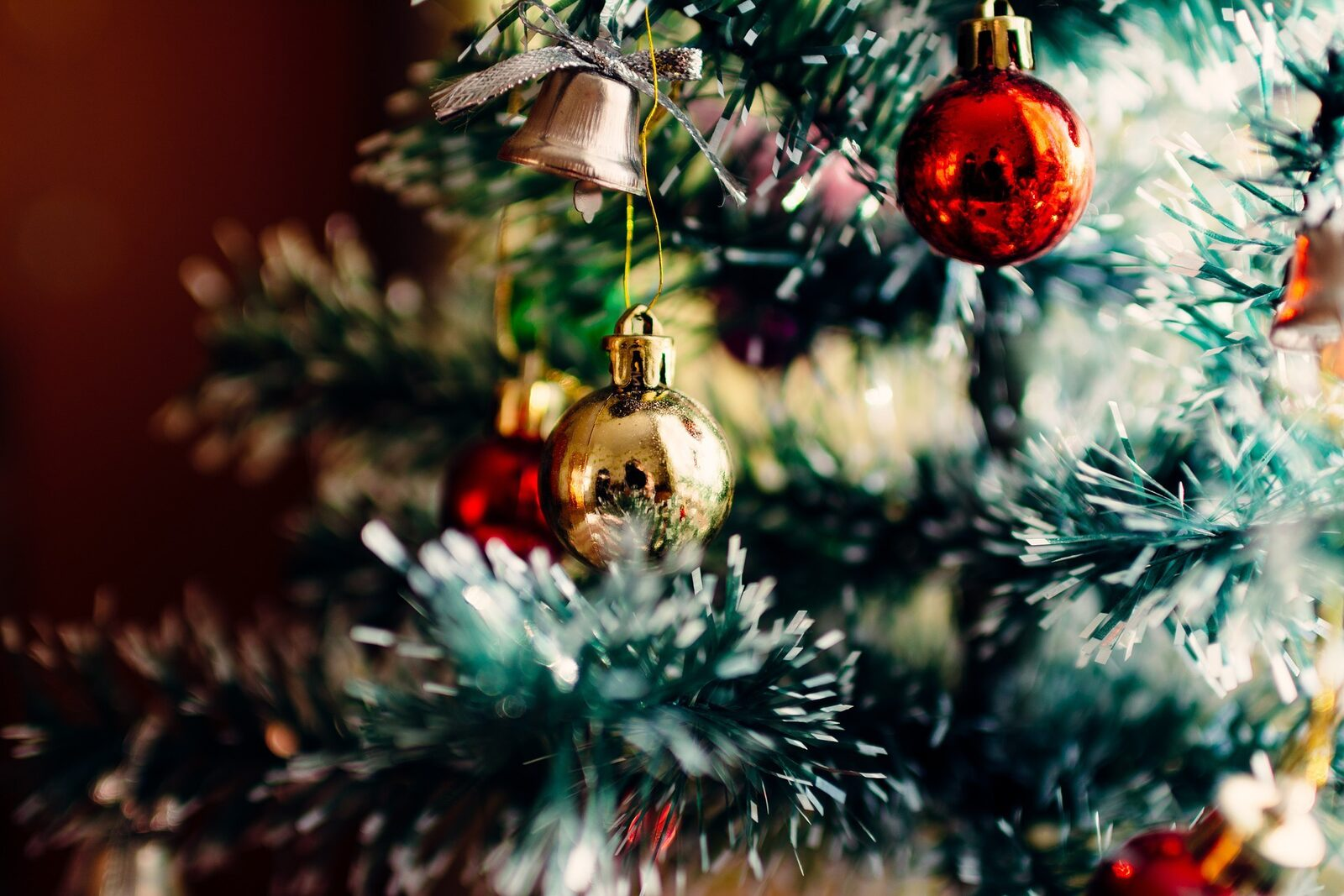 Rent a cottage during Christmas Limburg