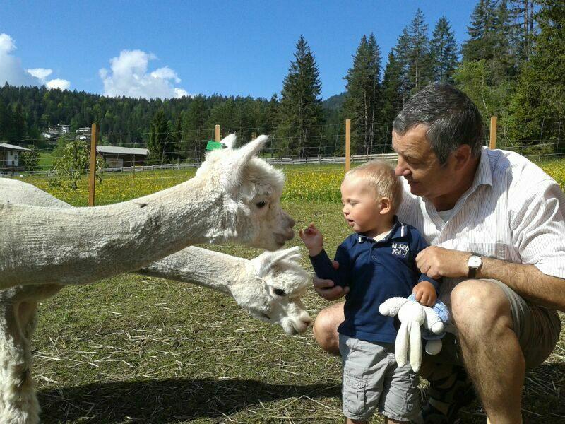 Alpaca boerderij Seefeld