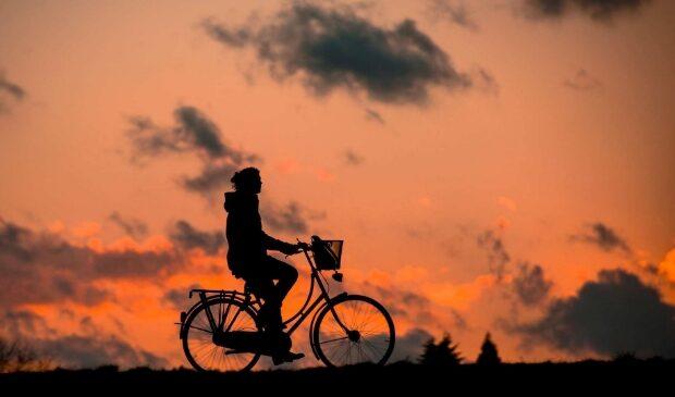 Wandel-en fietsroutes
