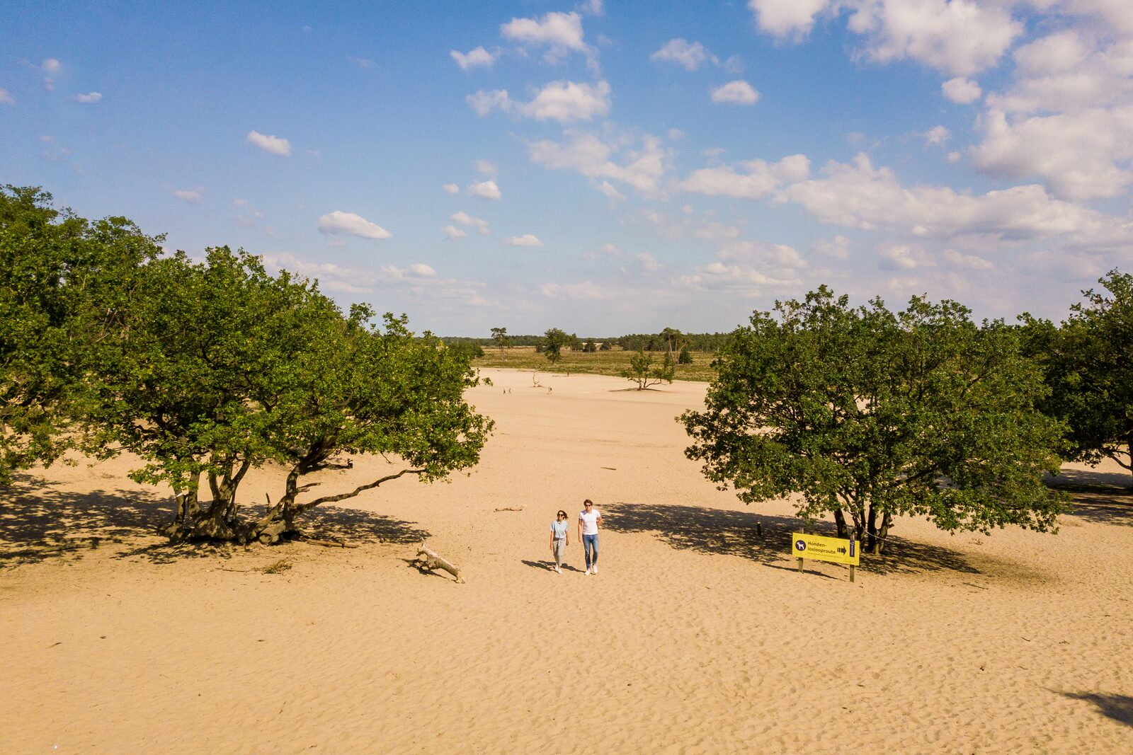 Holiday park Loonse and Drunense Duinen