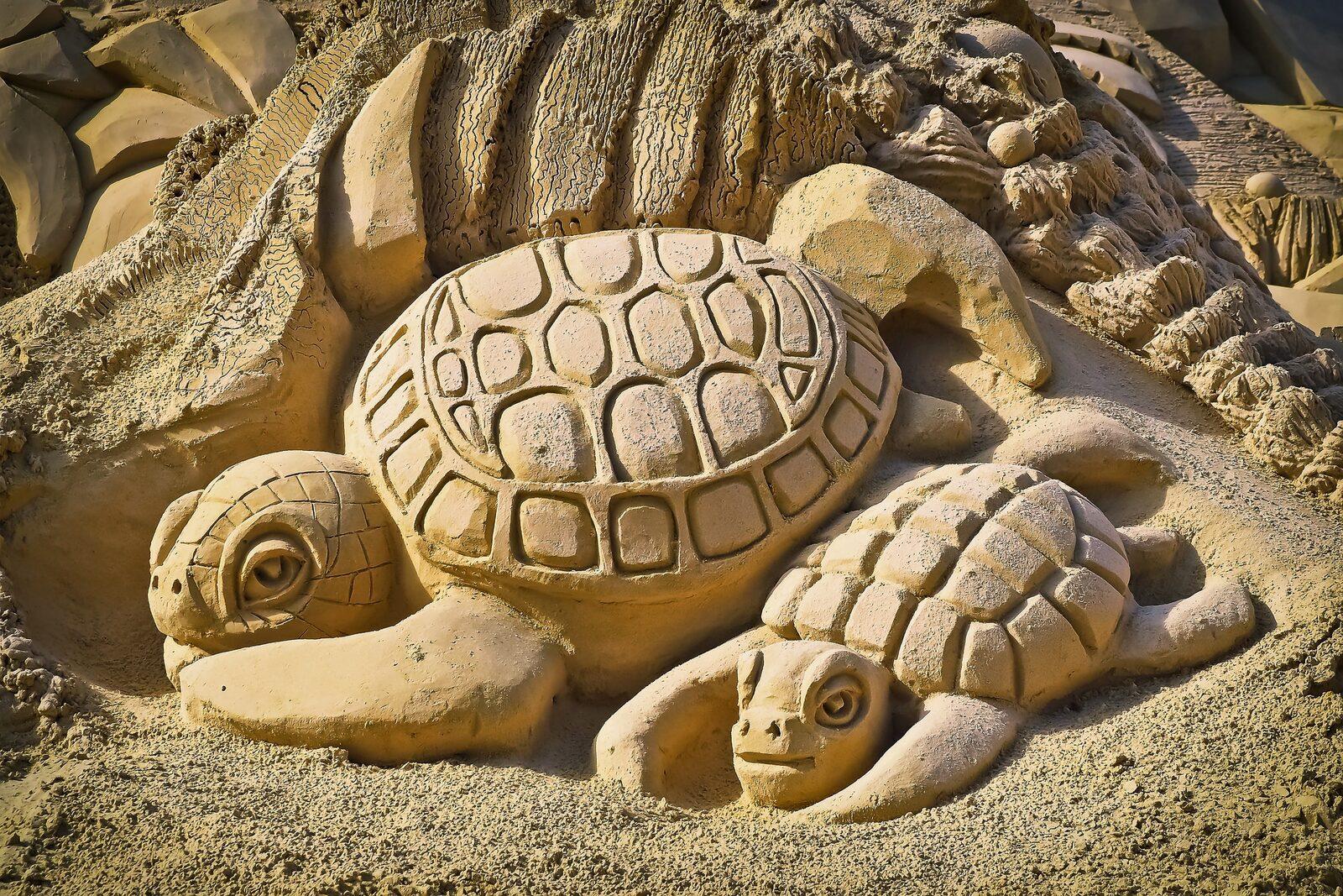 🤩 Kunstwerke aus Sand in Elburg!