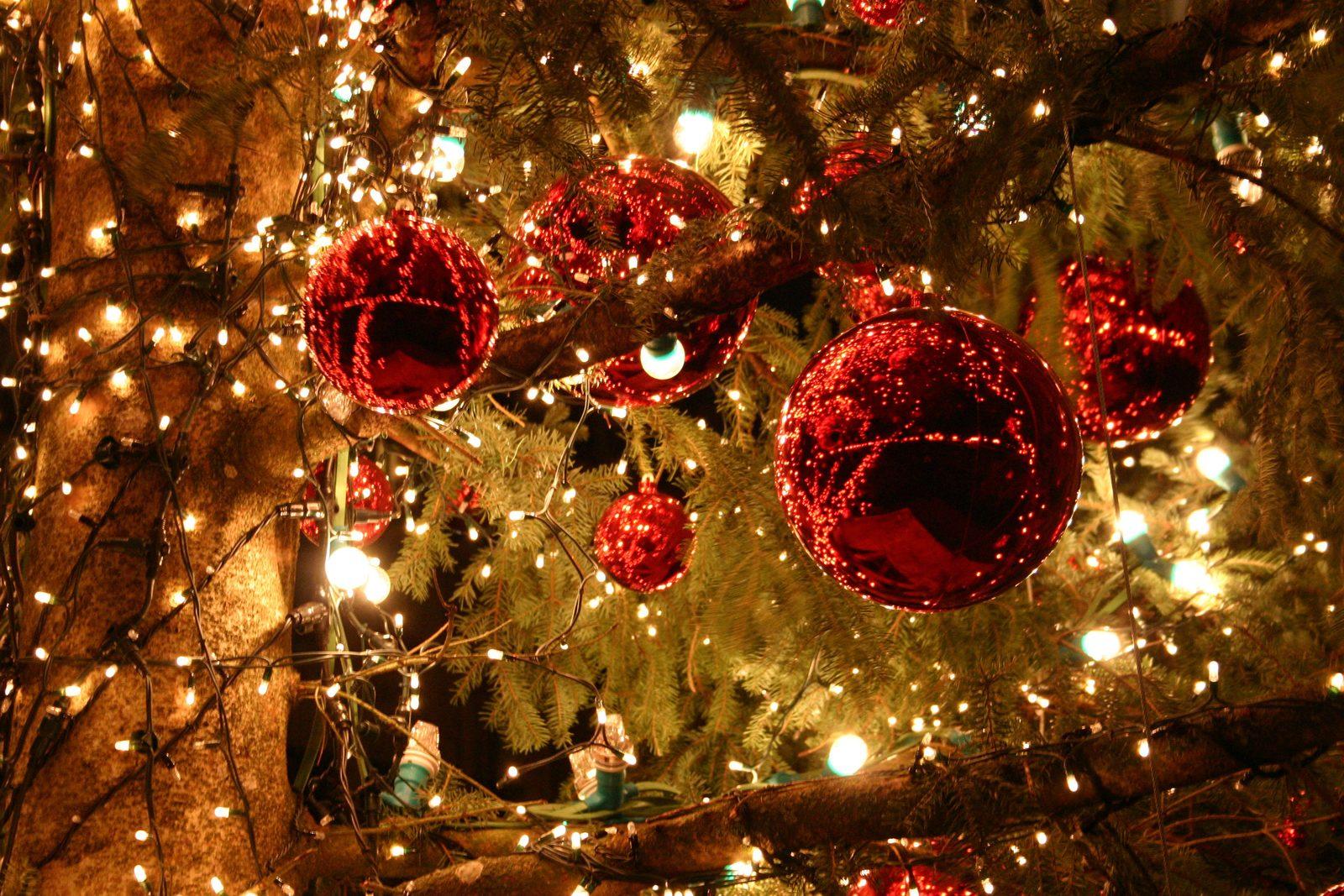 Mieten Sie über Weihnachten ein Ferienhaus