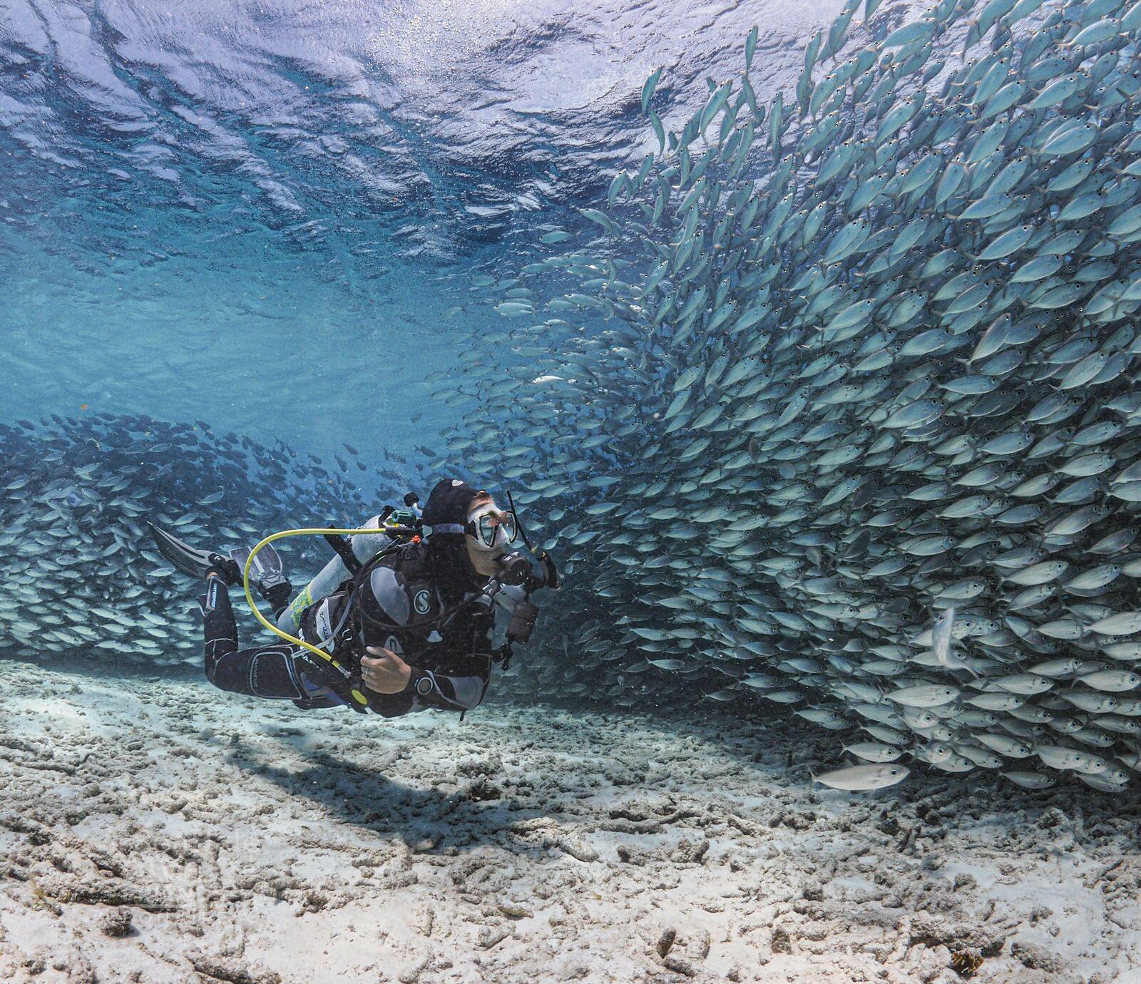 Deportes de agua en Bonaire