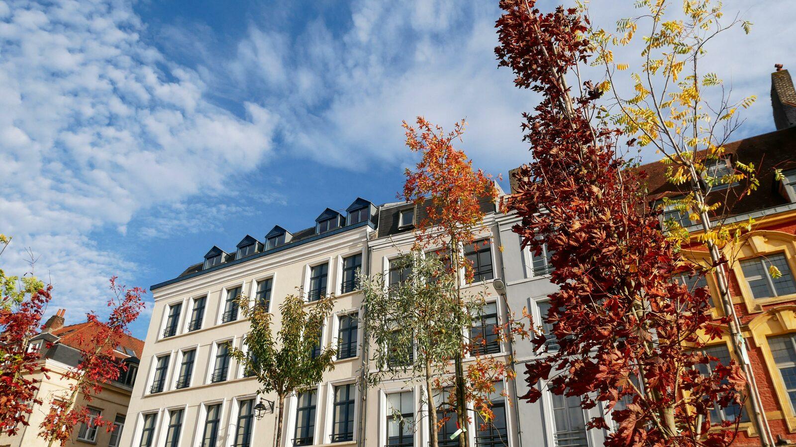 Que faire pendant les vacances de la Toussaint à Lille ?