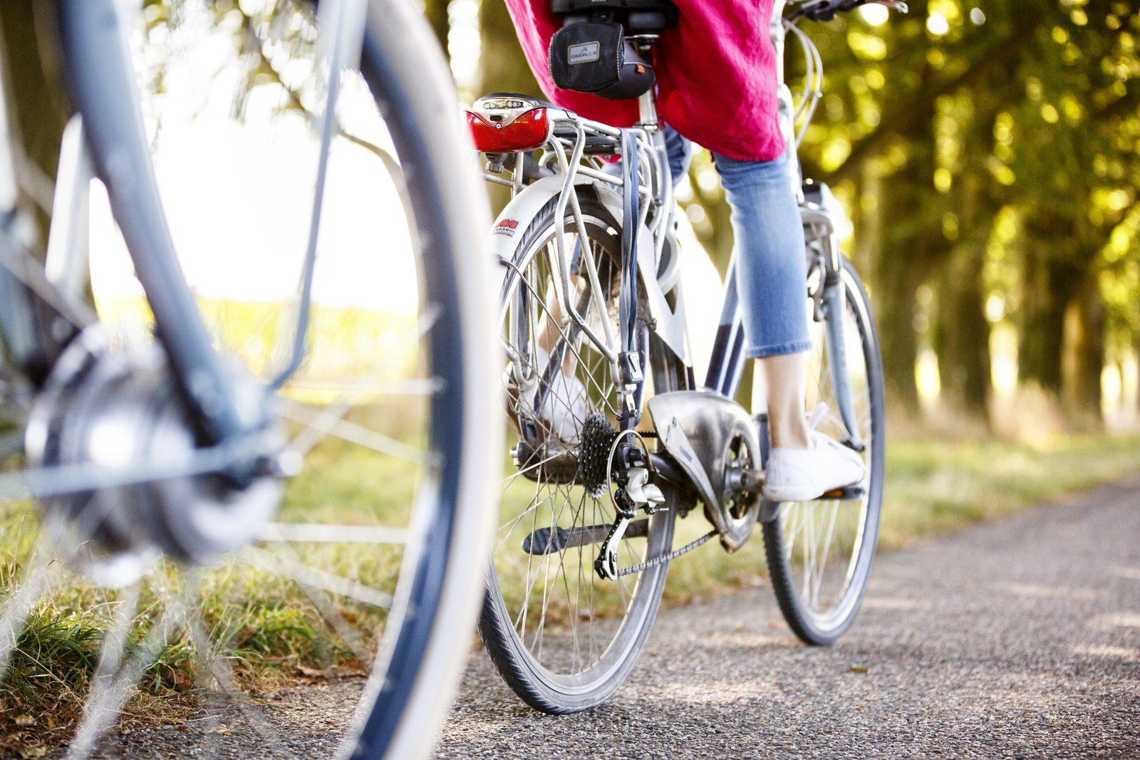 Ferienpark mit Fahrradverleih