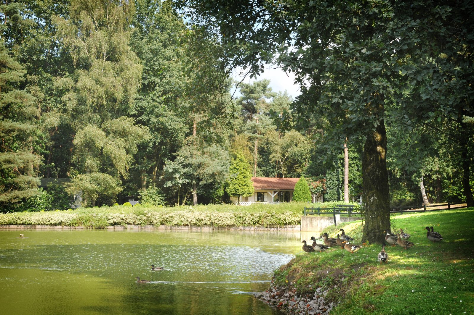 Vacation park near Chaam