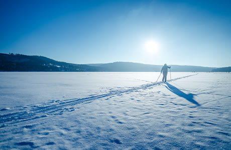 Cross country skiing Lipno -  Frymburk