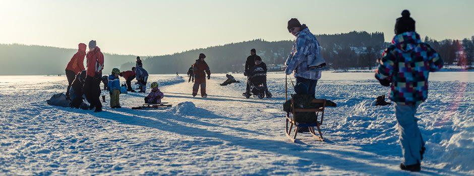 Ice skating track Lipno