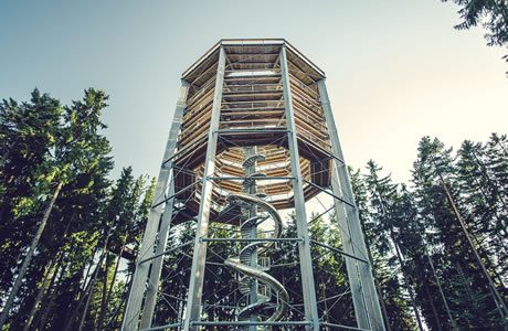 Tree top walkway Lipno