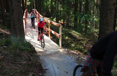 Flow trail Lipno