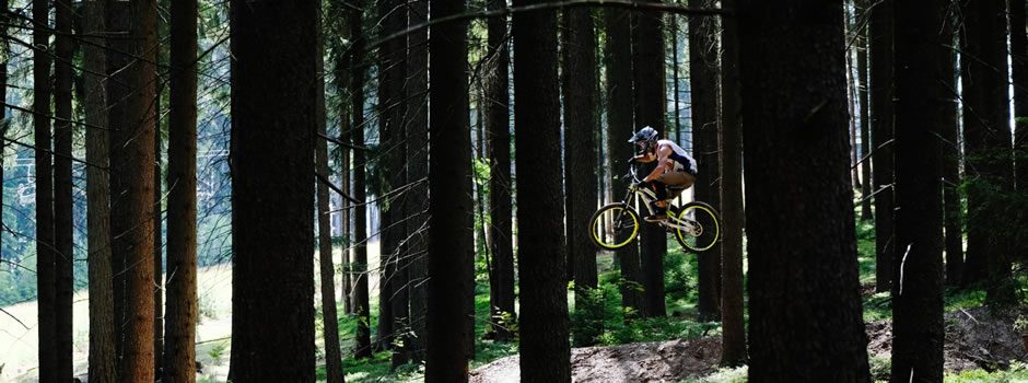 Bike Park Lipno