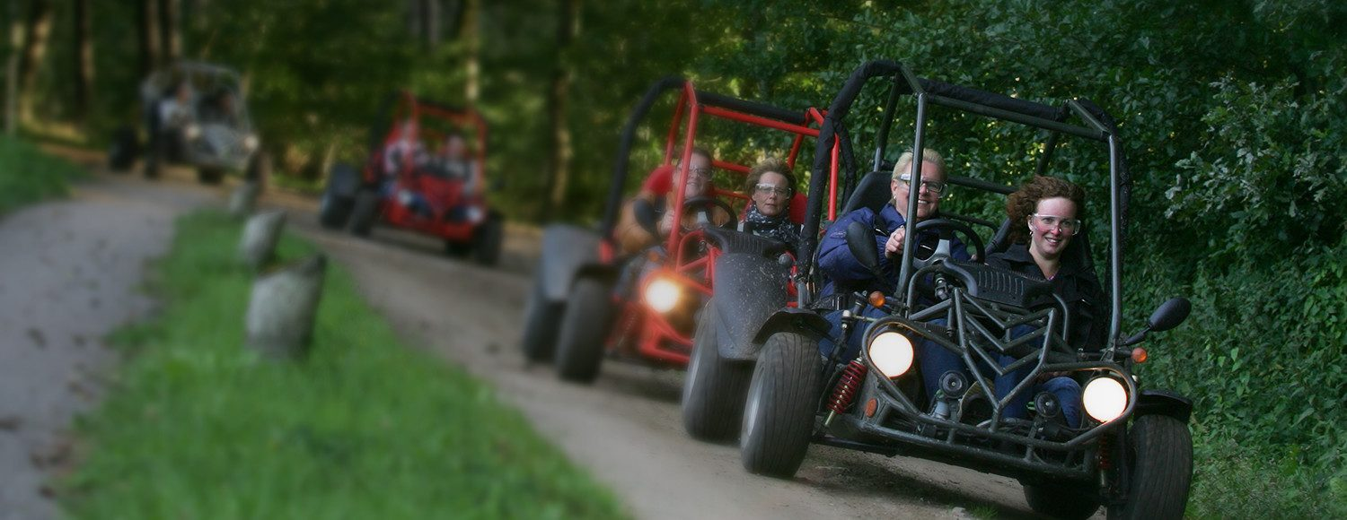 Driving a buggy