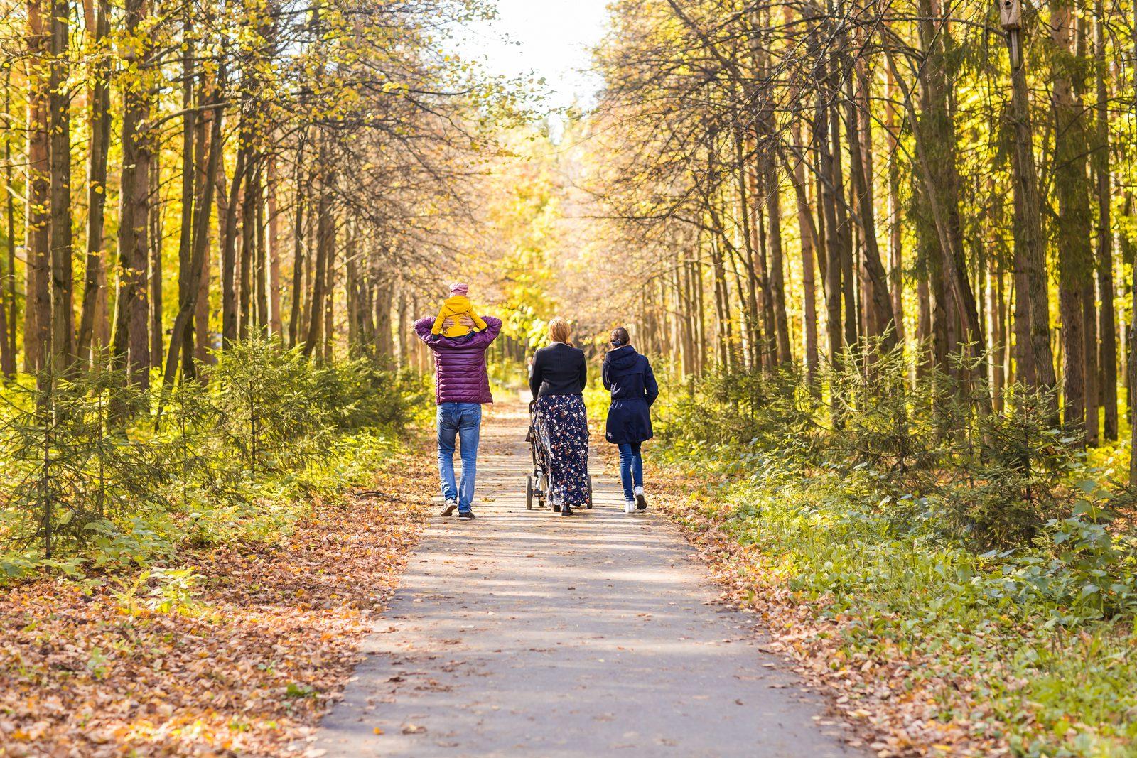 Célébrez l'automne dans le Limbourg méridional