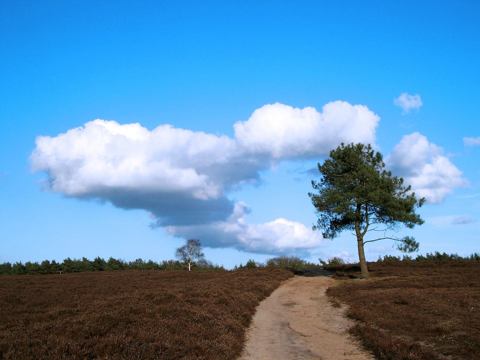 The story of the north of the Veluwe