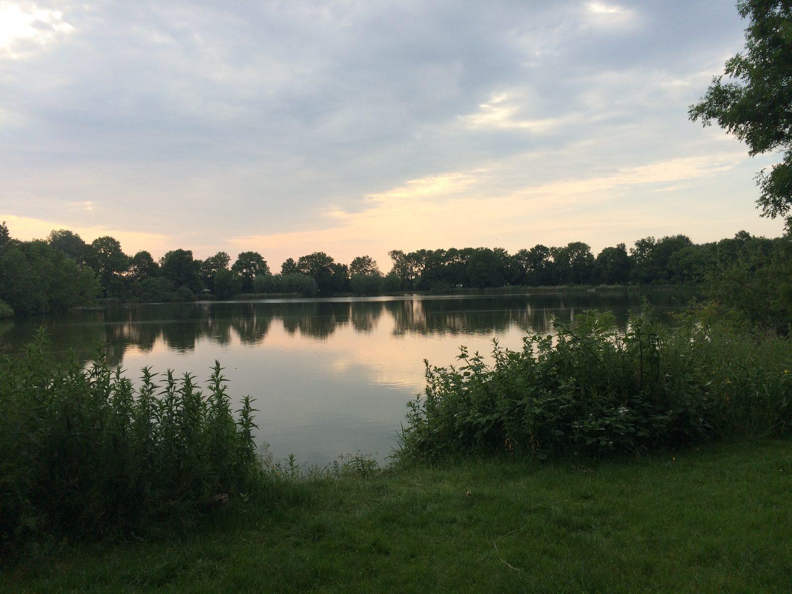 Zwemmen, varen & vissen