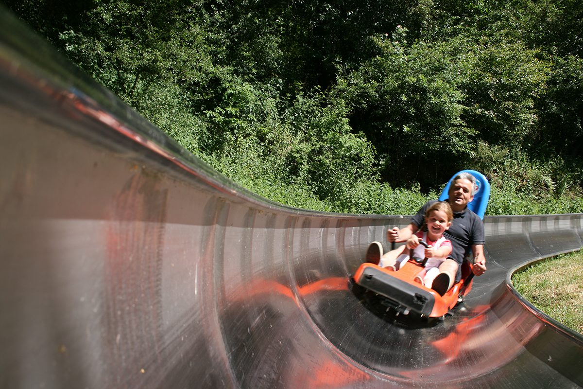 Summer Toboggan Run Peterberg