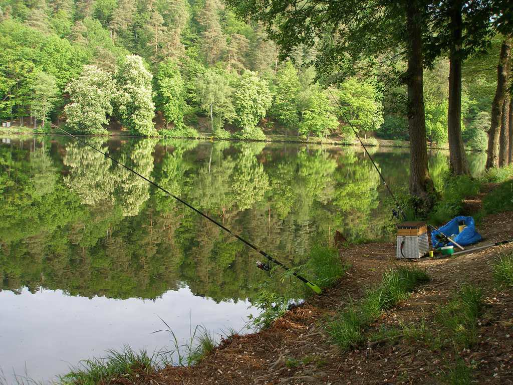 Fishing in the Ardennes