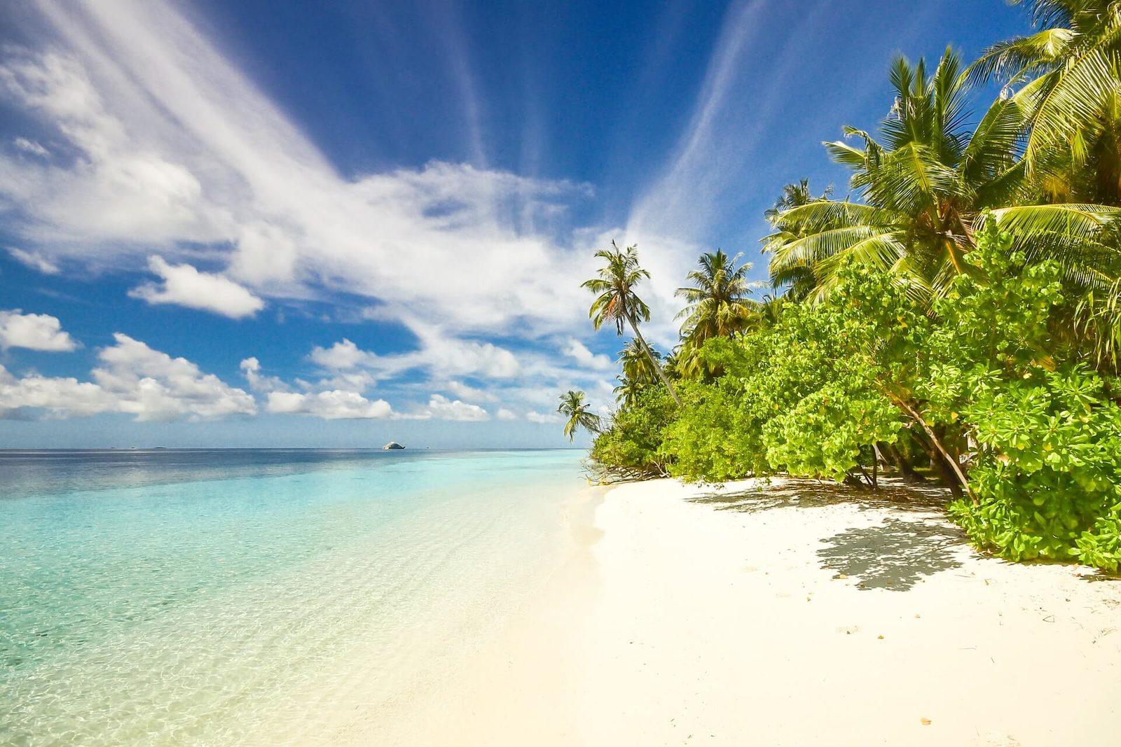 Bonaire beaches