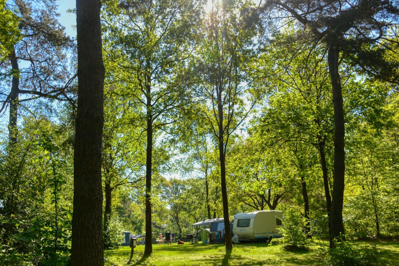 Bijzonder kamperen