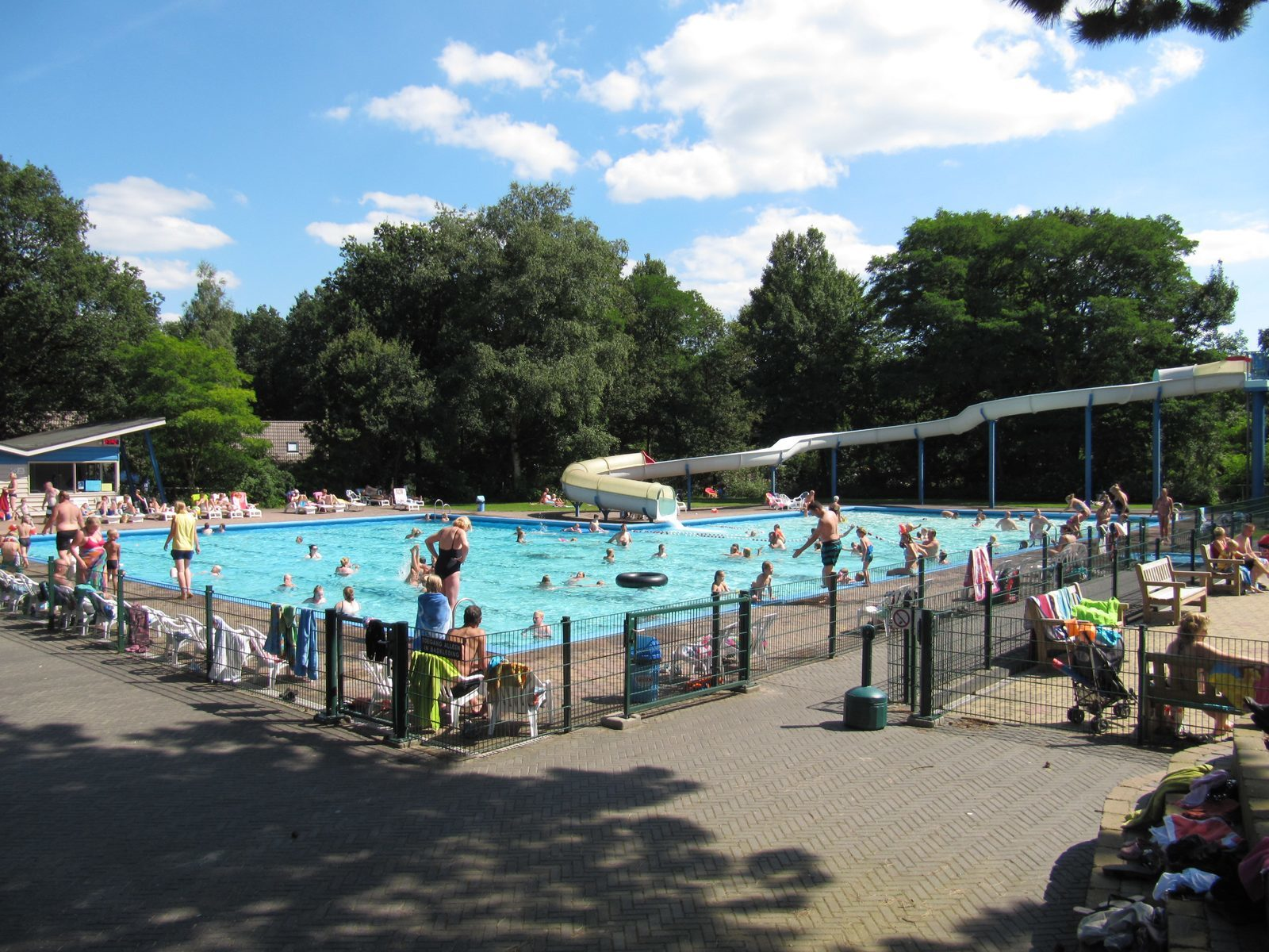 Swimming pool | Holiday Resort Witterzomer