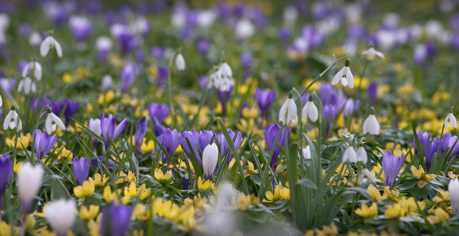 Spring holidays Gelderland