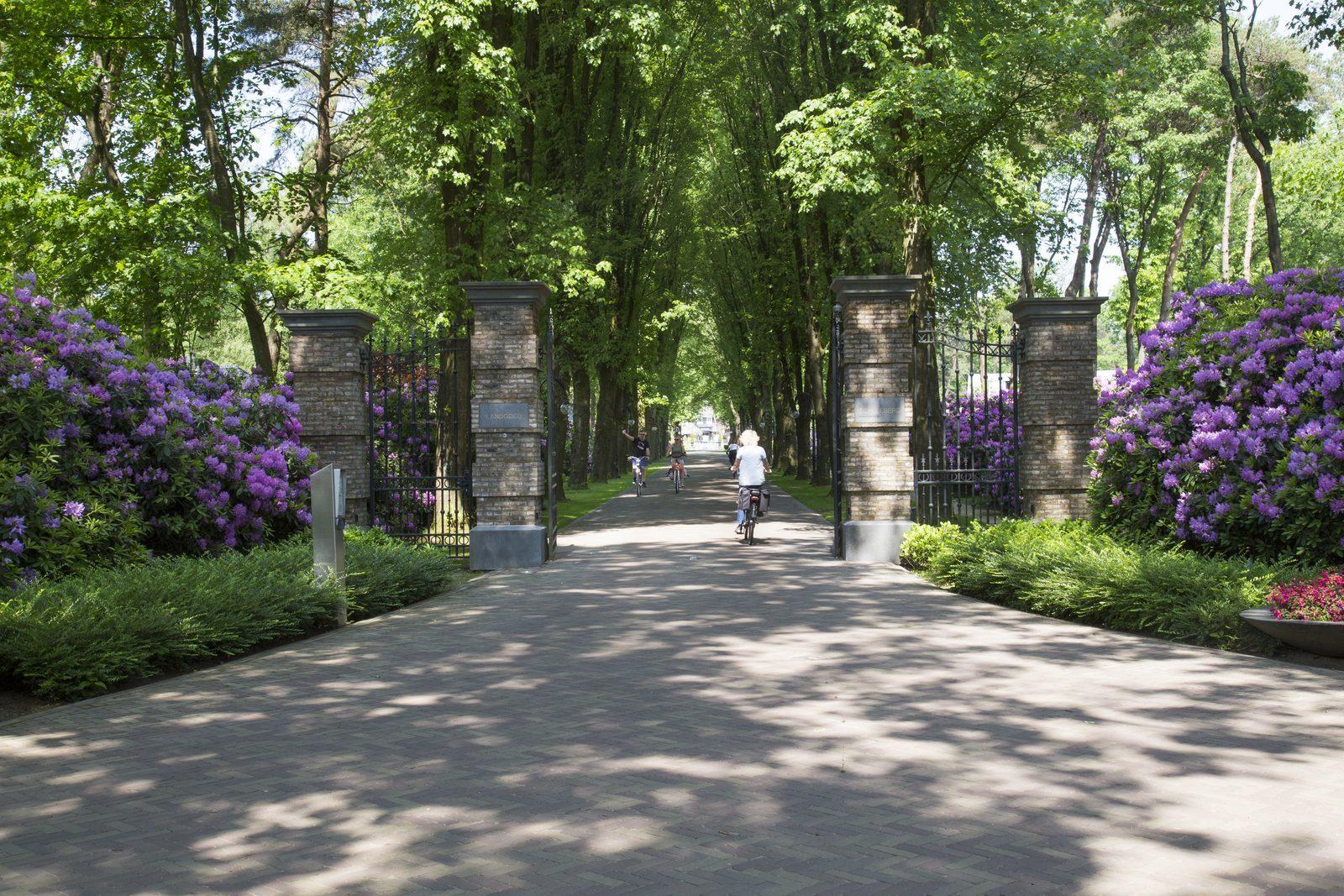 Drive way Landgoed de Scheleberg