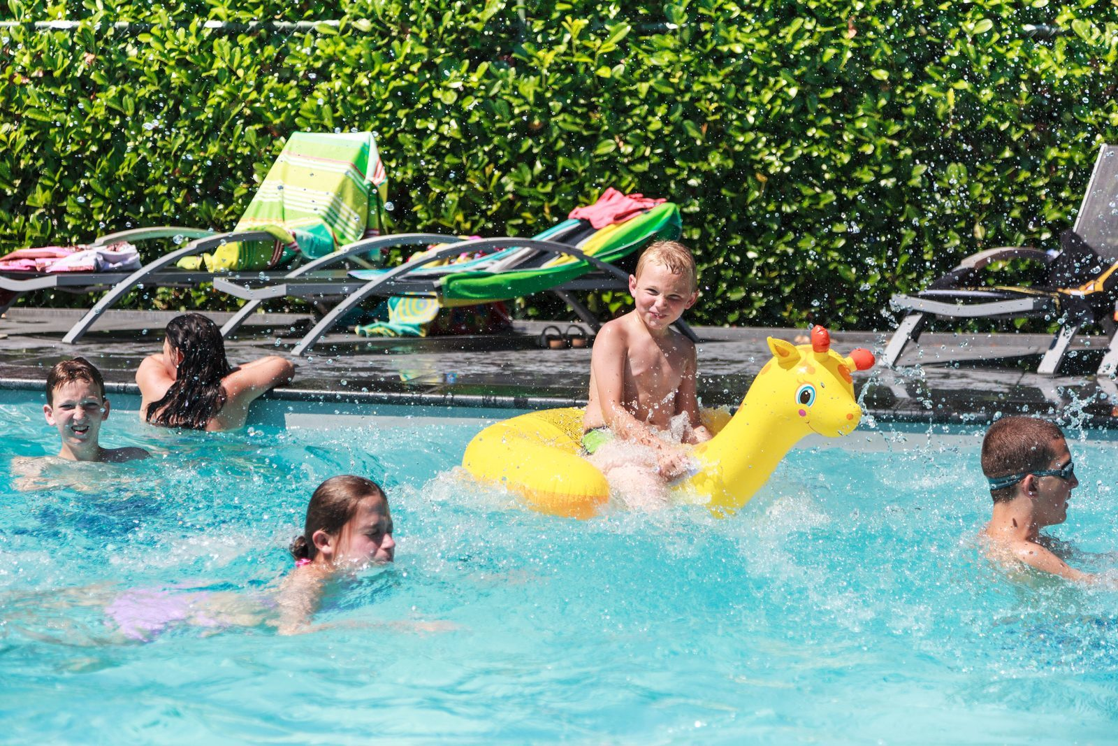 Camping Holland mit Schwimmbad