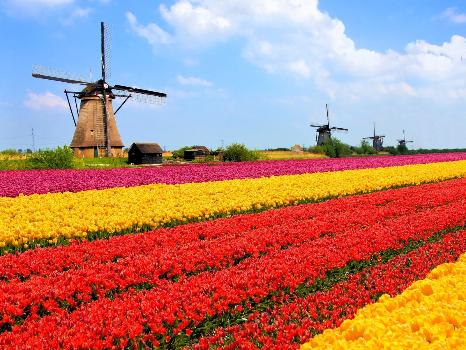 Holland Urlaub