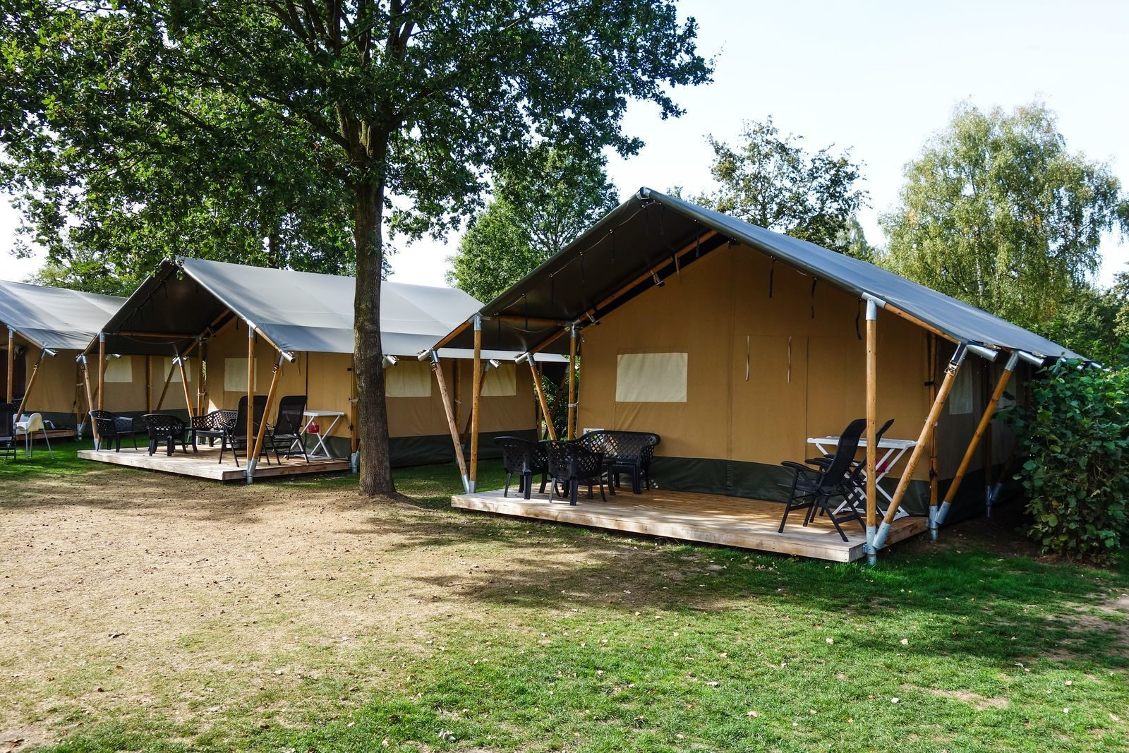 Safari tent in The Netherlands