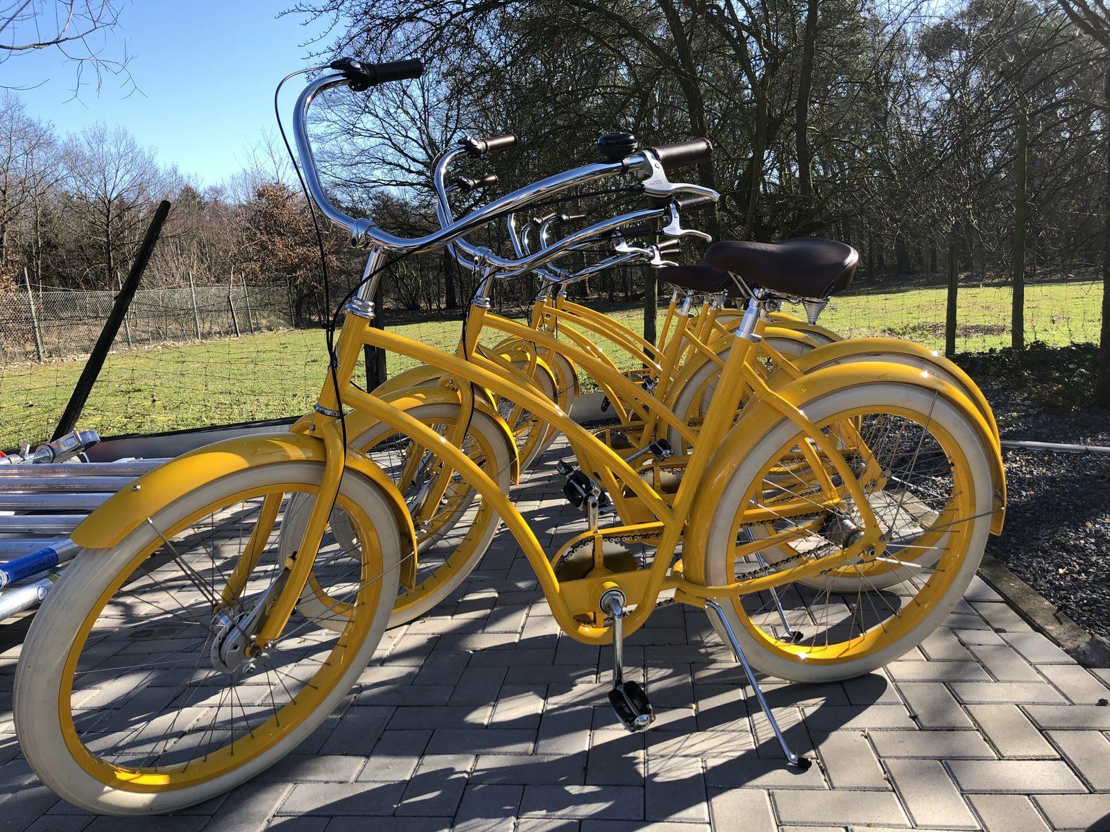 Radfahren auf den Yellow bikes durch die Achterhoek