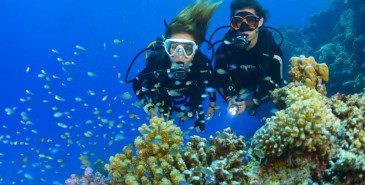 Een eerste duikervaring bij Todi