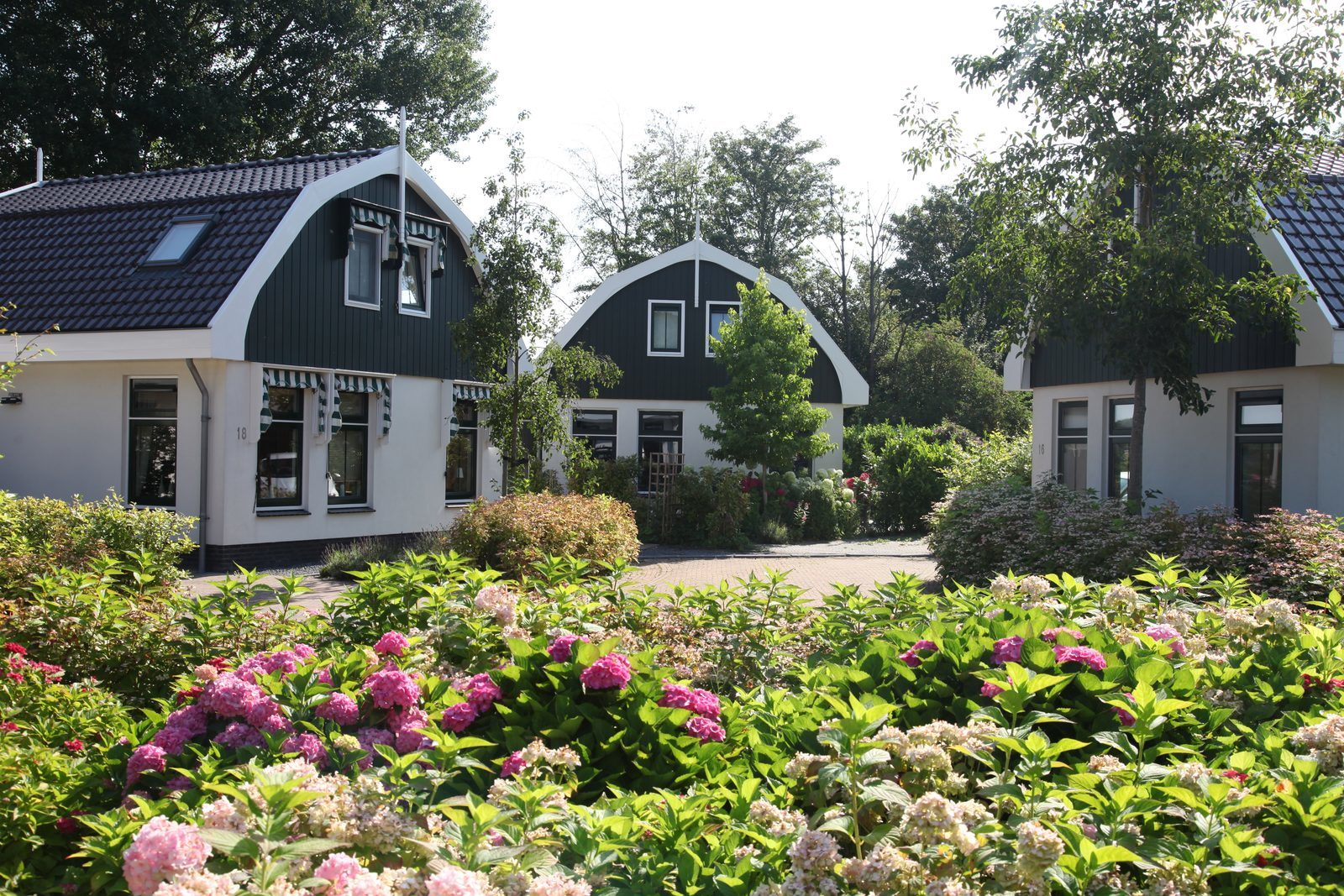 Holiday Resort North Holland