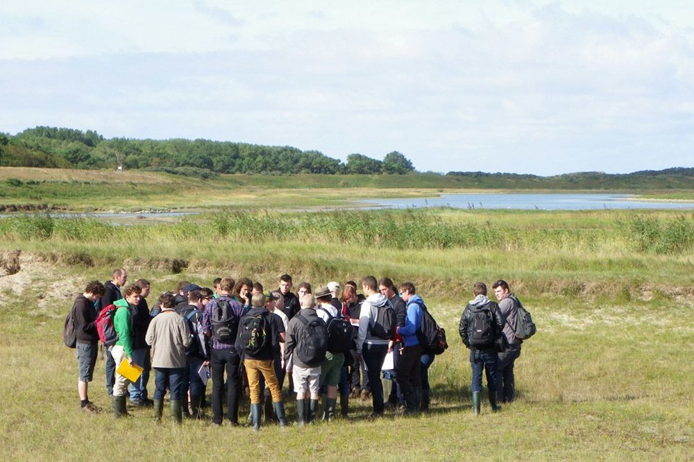 Natural reserve Het Zwin