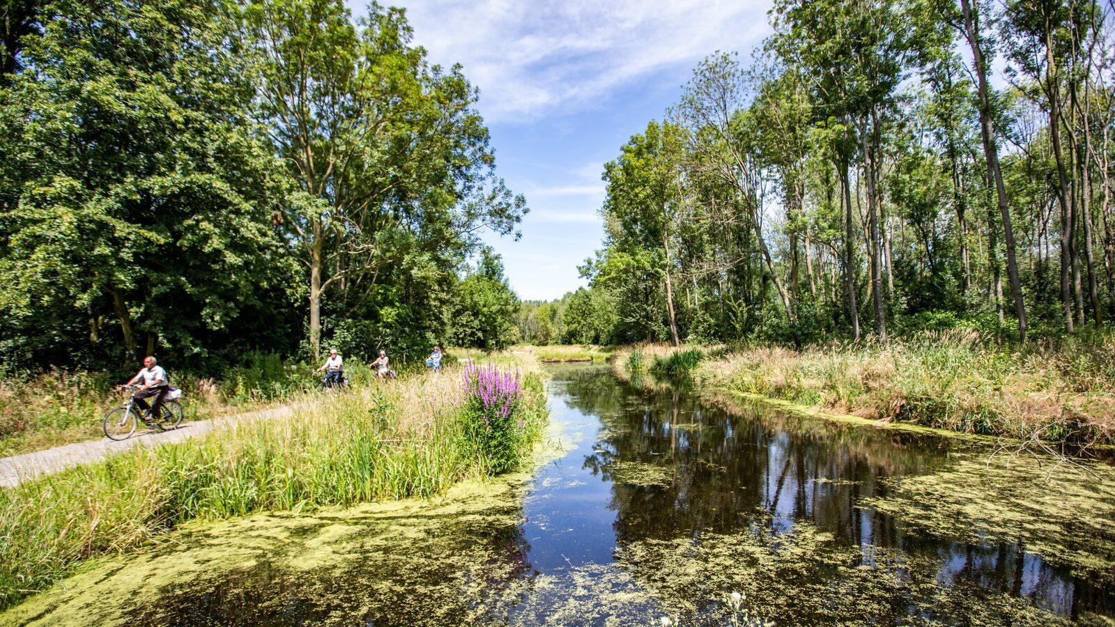 Vakantiewoningen te koop op Parc de IJsselhoeve
