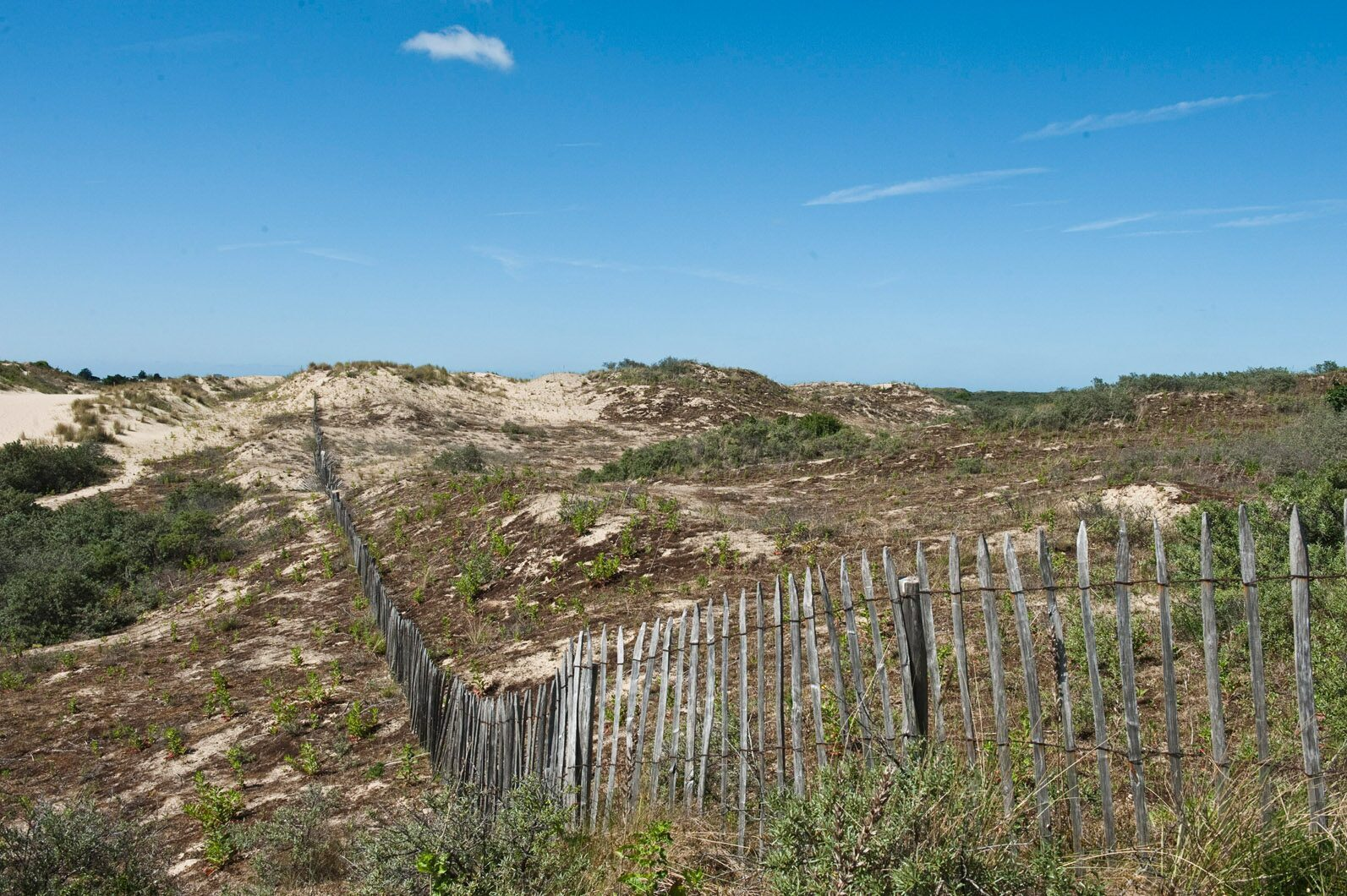 Bray-Dunes Etoile des Dunes (offline)