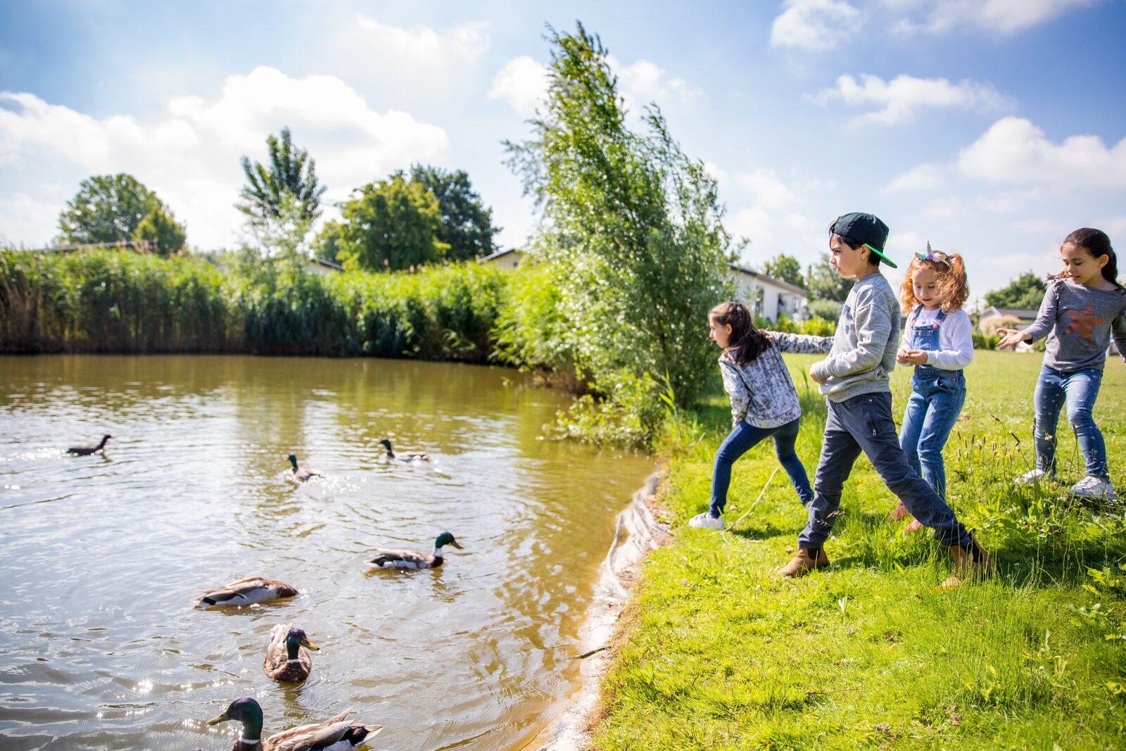 Acties Recreatiepark het Esmeer