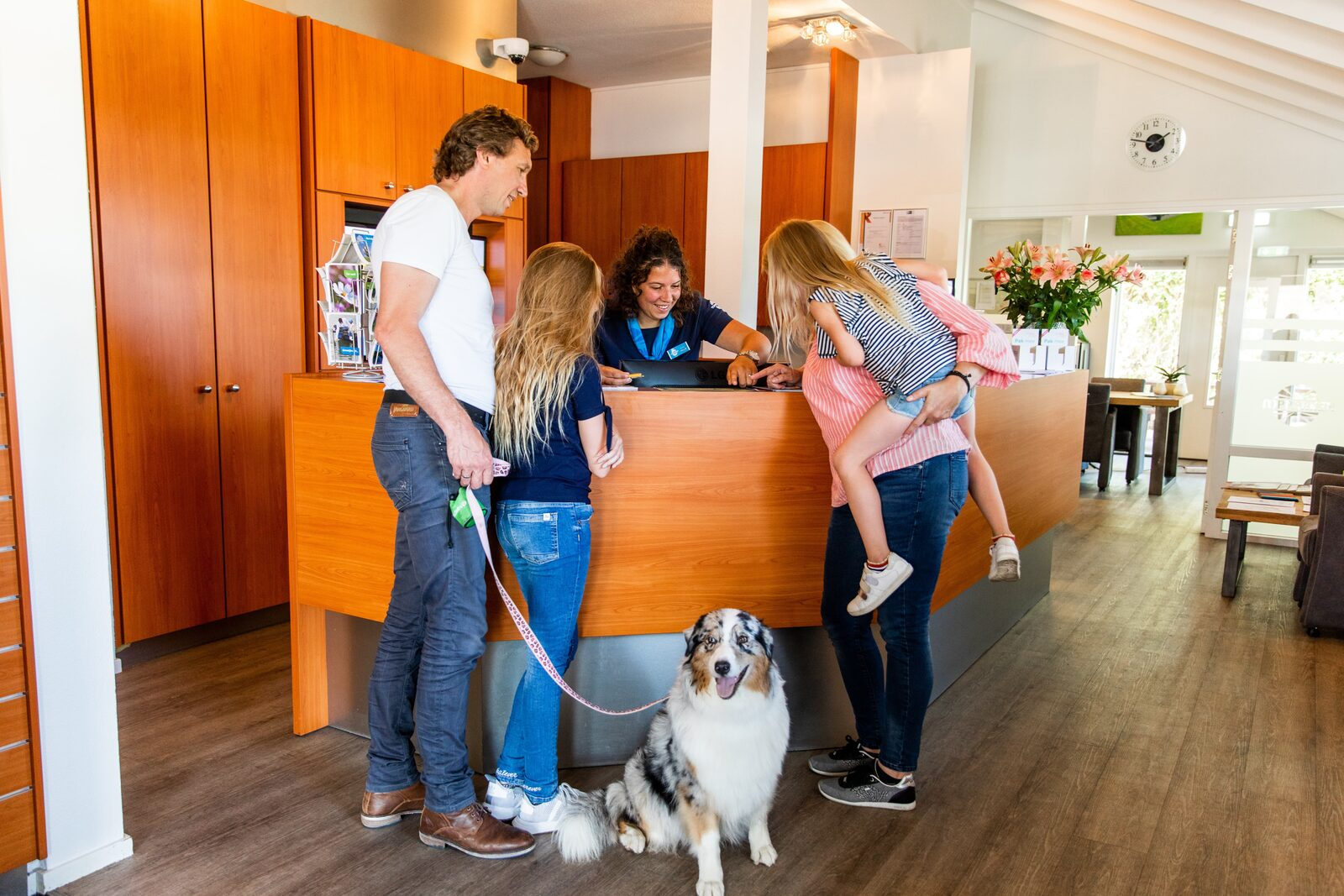 4 top destinations in the Netherlands for a holiday with your dog