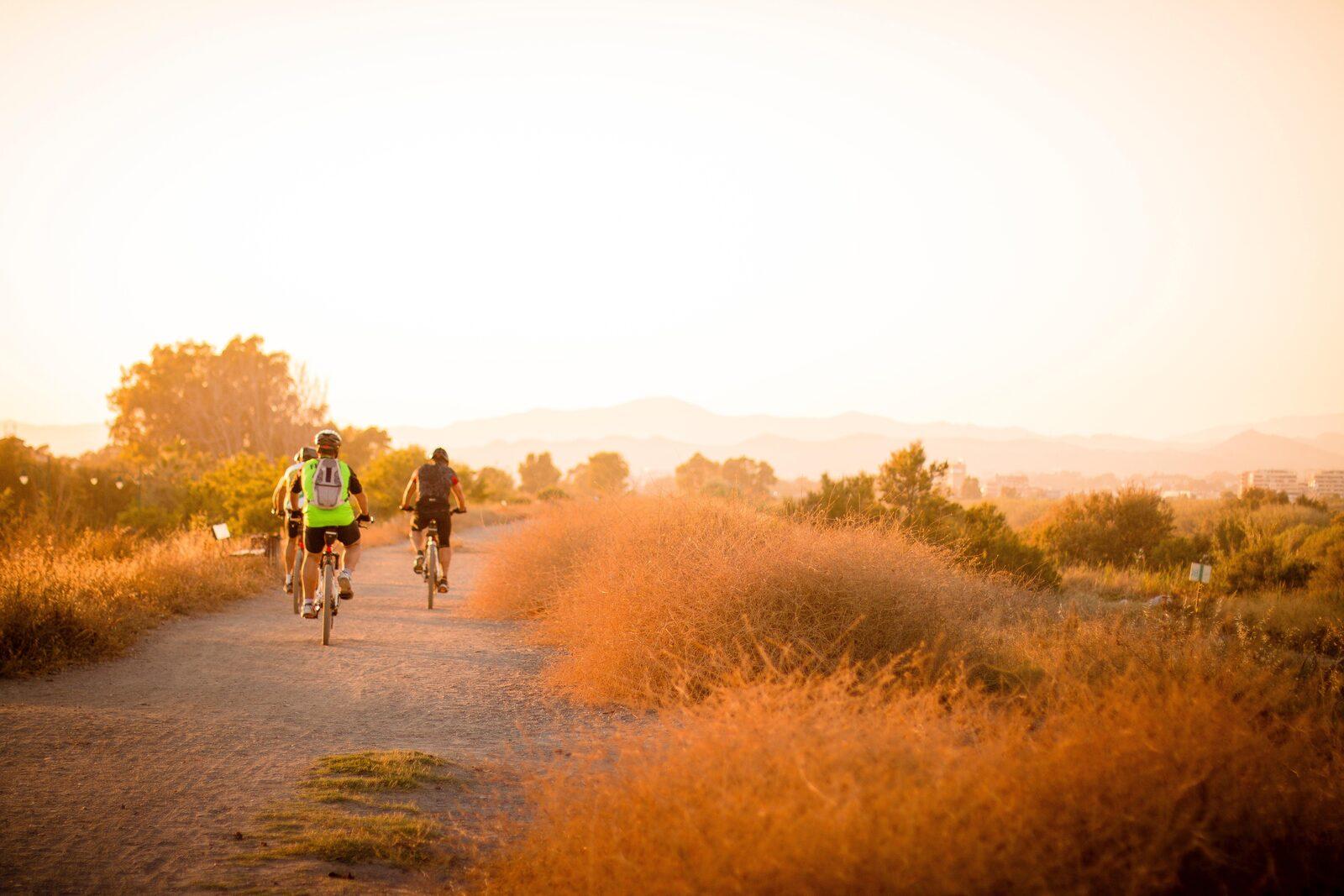 Weg in eigen land: de mooiste fietsroutes van Nederland